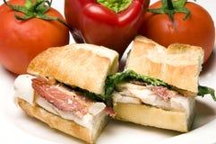 Sandwich à poulet gastronome Image stock