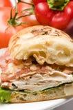 Sandwich à poulet gastronome Image libre de droits