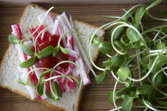 Sandwich à pousse de merde et de tournesol Photographie stock libre de droits