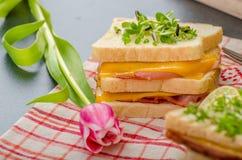 Sandwich à Reuben avec le chou, le boeuf et le habillage épicé images libres de droits