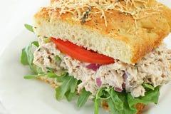 Sandwich à salade de thon Images libres de droits