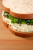 Sandwich à salade de thon Photo libre de droits