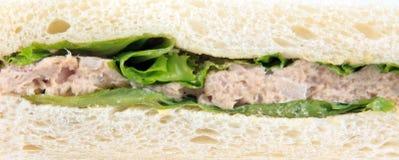 Sandwich à thon de blé entier Photo stock