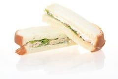 Sandwich à thon de blé entier d'isolement sur le backgro blanc Photographie stock libre de droits