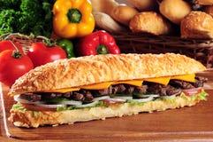 Sandwich à viande Images stock