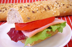 Sandwich. Colorful healthy vegetable salad sandwich Royalty Free Stock Image