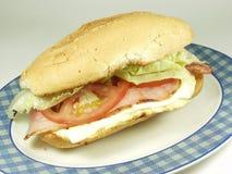 Sandwich Royalty-vrije Stock Fotografie