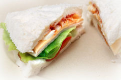 Sandwich. With Cheese, egg, tomatoes and lettuce stock photos