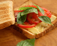 Sandwich. The sandwich with a tomato Royalty Free Stock Photos