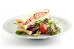 Sandwich. With salmon, bacon, turkey, pepper and sallad Stock Image