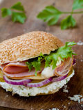 Sandwich. Rustic Sandwich with Lettuce, Cucumber, Ham and Red Onions stock images