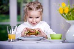 Free Sandwich Stock Photography - 18728302
