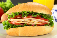 Sandwich Stock Images
