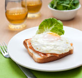 Sandwich. With fish, and fried egg Stock Photography