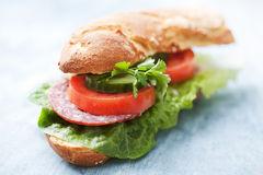 Sandwich Stock Photography
