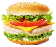 Sandwich. With cheese, lettuce, tomato and chicken cutlet. Studio shooting on white backпround with shadow Stock Photos
