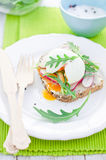 Sandwich. Wholemeal bread with radish and egg Stock Photos