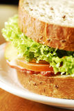 The sandwich Stock Images