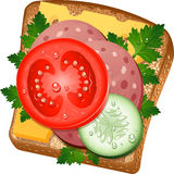 Sandwich illustration stock