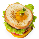 Sandwich. On the white background Stock Image