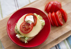 Sandwich. Homemade sandwich with cheese and tomato on red plate royalty free stock photography