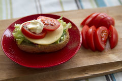 Sandwich. Homemade sandwich with cheese and tomato on red plate Stock Images