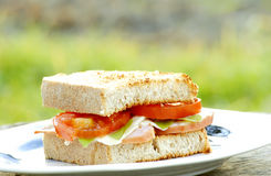 Sandwich Lizenzfreie Stockfotografie
