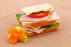 Sandwich Photographie stock
