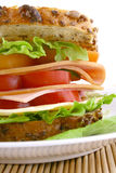 Sandwich stock image