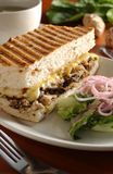 Sandwich. Chicken mushroom sandwich with salad stock images