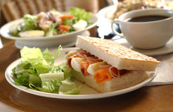 Sandwich. Smoked salmon sandwich with salad background royalty free stock image