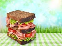 Sandwich royalty-vrije stock foto's