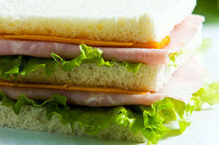 Sandwich. Ham and cheese sandwich with lettuce on background Royalty Free Stock Photo