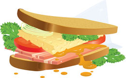 Sandwich. The sandwich prepared during a short break on advertising. A vector illustration Royalty Free Stock Images