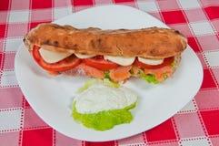Sandwich 07 Photographie stock