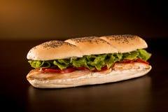 Sandwich au poulet avec de la laitue, la tomate et la mayonnaise photographie stock