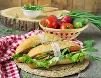Sandwich avec de la viande et les légumes rôtis Photographie stock
