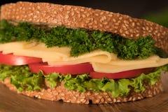 Sandwich avec de la viande fumée et le persil de fromage de salade images stock