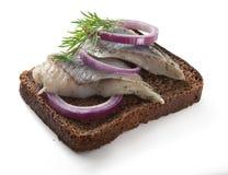 Sandwich avec des harengs photos libres de droits