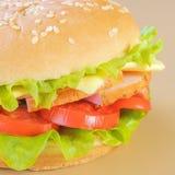 Sandwich avec du jambon image libre de droits