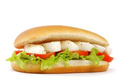 Sandwich avec du mozzarella Photo stock
