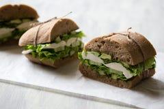 Sandwich avec du mozzarella Photographie stock