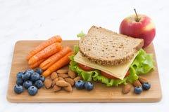 Sandwich avec du pain complet sur le repas scolaire image stock