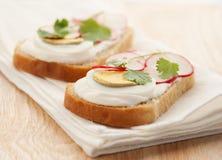 Sandwich avec l'oeuf et le radis Image libre de droits