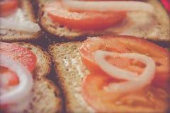 Sandwich avec la photographie de nourriture de tomate et d'oignon Photos libres de droits