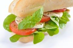 Sandwich avec la tomate et le mozzarella Images stock