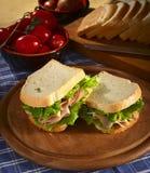 Sandwich avec la Turquie Image stock