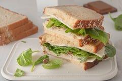 Sandwich avec le mayonaisse, la dinde, le fromage et frais Photographie stock