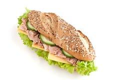 Sandwich avec le thon photos stock
