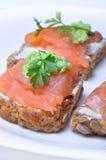 Sandwich avec les saumons fumés Photographie stock libre de droits